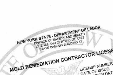 Yonkers Mold Remediation